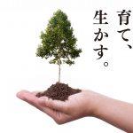 日本製紙株式会社ケミカル事業本部