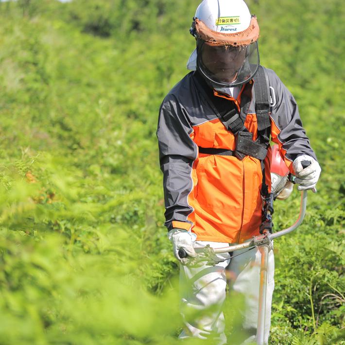 江津市森林組合で働く人の声